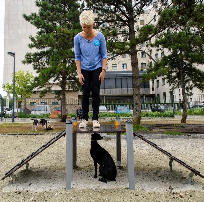 Kóbor kutyákon segítene Pokorny Lia, Szabó Zsófi és Király Viktor